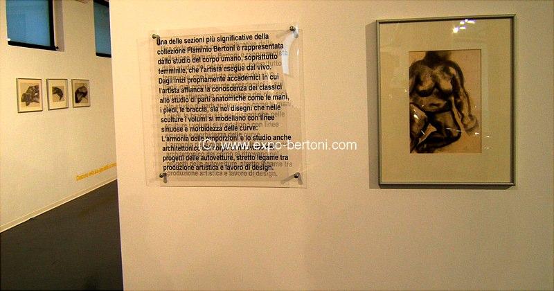 museum-bertoni-081