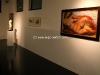 museum-bertoni-041