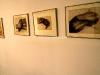 museum-bertoni-073